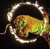 Цирки в Кемерово